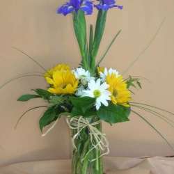 Administrative Day (5)