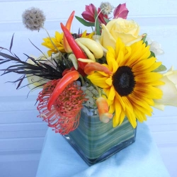 Administrative Day (8)