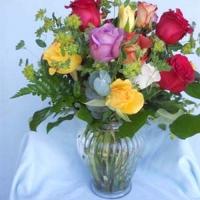 Roses (10)