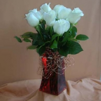 Roses (6)