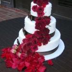 Cake (19)