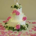 Cake (20)