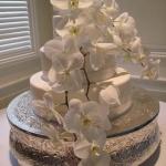 Cake (22)