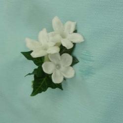 Flowers to wear (21)