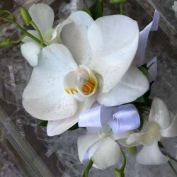 Flowers to wear (25)